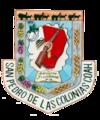 Escudo de San Pedro de las Colonias.png
