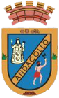 Coat of arms of Andacollo