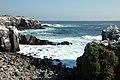 Espanola Island, Galapagos - panoramio - David Broad (1).jpg