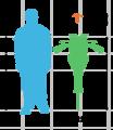 Eurypterus size comparison.png