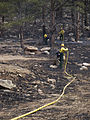 FEMA - 39759 - Fire fighters in Colorado.jpg