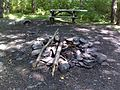 FLT M31 8.0 mi - Designated bivouac 3 N of Alder Lake, picnic table - panoramio.jpg