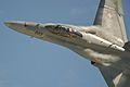 F A-18 Hornet (6240073323).jpg