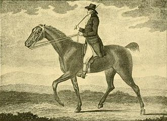"Francis Sartorius - Portrait of Mr. Bishop's celebrated ""trotting mare"" (engraving after Sartorius)"