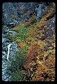 Fall Colors (1012ca15805d42edb7622bfc1354dd0d).jpg