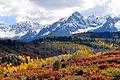 Fall colors near Ridgway, Colorado.jpg