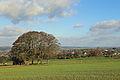 Falmignoul Countryside R04.jpg