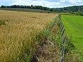Farmland, Amesbury - geograph.org.uk - 489545.jpg