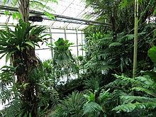 Alter Botanischer Garten Göttingen Wikipedia