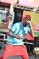 FestAfrica 2017 (36864625764).jpg