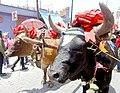 Fiesta Patronal de San Isidro Labrador, Metepec, EDOMEX.jpg