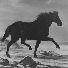 Finske slädlöparen, Karl XI:s häst