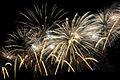 Fireworks Wianki 2009 (3644957683).jpg