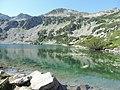 Fish Banderishko lake, Pirin National Park 10.JPG
