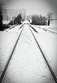 Flickr - Laenulfean - rails thru snowy landscapes.jpg