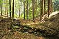 Fliesgewässer auf dem Weg in Richtung Oberer Reichenbachstolln 2H1A6817WI.jpg