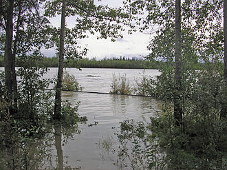 2008 Tanana Valley flood - The Tanana River overflows its banks during the flood.