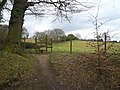 Footpath View near Stubbing - geograph.org.uk - 706385.jpg