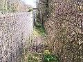 Footpath alongside railway - geograph.org.uk - 1231551.jpg