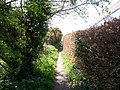 Footpath at Warsash - geograph.org.uk - 766187.jpg