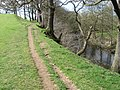 Footpath beside the River Derwent - geograph.org.uk - 1248058.jpg