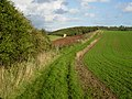 Footpath north of The Sykes - geograph.org.uk - 264300.jpg
