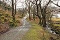 Footpath to Tarbet. - geograph.org.uk - 1802318.jpg