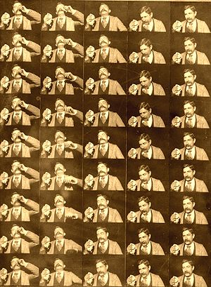 Fred Ott's Sneeze - 45 paper prints made from individual frames of the film.
