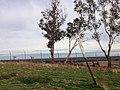 Fresno, CA, USA - panoramio (57).jpg