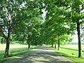 Friendship Hill National Historic Site - Point Marion, Pennsylvania (8481237209).jpg