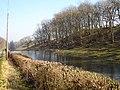 Frozen pond near Bryn-y-cil - geograph.org.uk - 698289.jpg