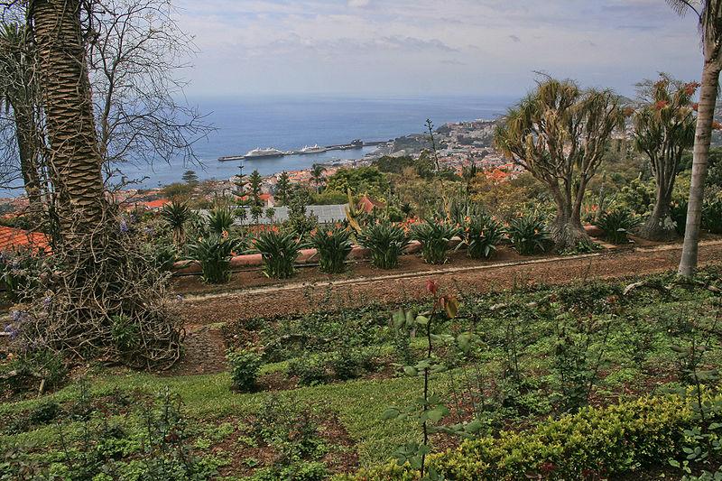 Image:Funchal - Blick vom Botanischen Garten auf den Hafen.JPG
