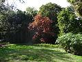 Garden of Ninfa3.JPG