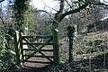 Gate, Riverside Footpath - geograph.org.uk - 339542.jpg