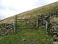 Gate and wall, Hamildean Hope - geograph.org.uk - 590760.jpg