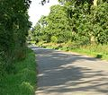 Gaulby Lane near King's Norton - geograph.org.uk - 500557.jpg