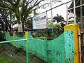GeneralEmilioAguinaldo,Bixa orellanajf9216 02.JPG