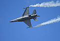General Dynamics F-16 Fighting Falcon 0008 (4827133524).jpg