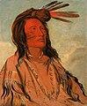 George Catlin - Tchán-dee, Tobacco, an Oglala Chief - 1985.66.71 - Smithsonian American Art Museum.jpg