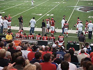 Vick (#7) watches from the sidelines while the defense is on the field against the Giants