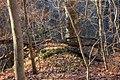 Gfp-iowa-bellevue-state-park-forest-landscape.jpg