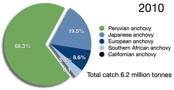 Capture of all anchovy reported by the FAO (green indicates Peruvian anchoveta)[1]
