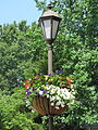 Gloucester, VA Flower Basket on lamp post. - By Chuck Thompson of TTC Media.JPG