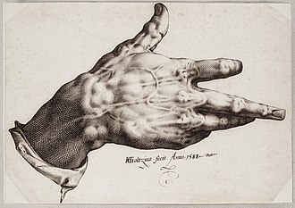 Burin (engraving) - The malformed hand of Hendrik Goltzius, which was especially suited to the use of a burin