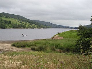 Gouthwaite Reservoir Reservoir in North Yorkshire, England