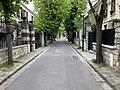 Grande Avenue - Le Pré-Saint-Gervais (FR93) - 2021-04-28 - 1.jpg