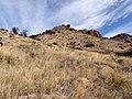 Grassland Chiricahua NM.jpg