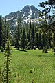 Grassy Meadow at Anthony Lakes, Wallowa Whitman National Forest (33633714744).jpg