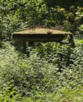 Grebenhain Grebenhain Zum Hohenrain Ruins Muna Jul f.png