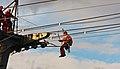 Höhenrettungsübung der Feuerwehr Köln an der Seilbahn-6020.jpg